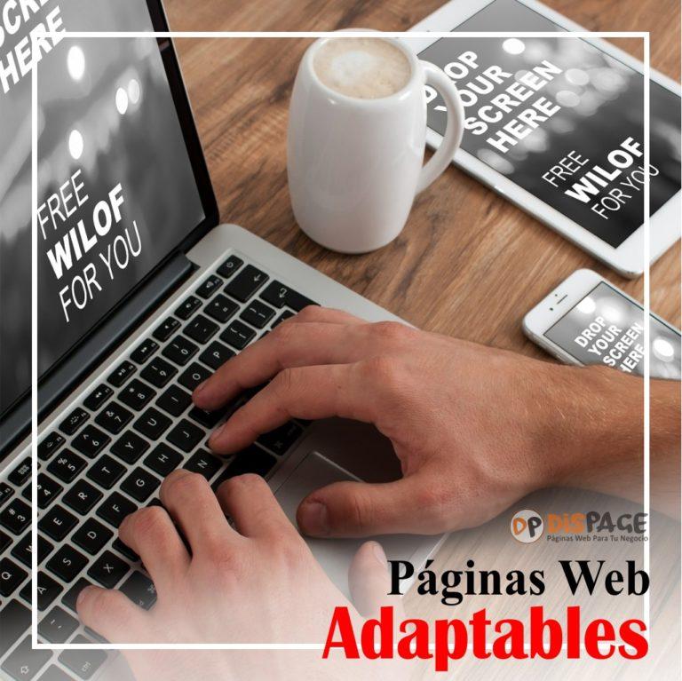 desarollo y diseño web dispage guayaquil